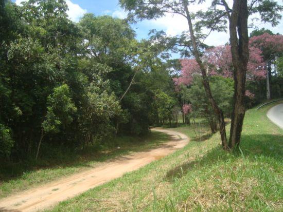 http://www.toribioimoveis.com.br/fotos_imoveis/516/DSC05559.JPG