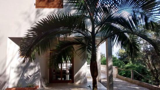 Casa em Condomínio à venda Condomínio Ypeville - IMG_20160411_143617467_HDR.jpg